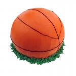 3D003 Basket Ball